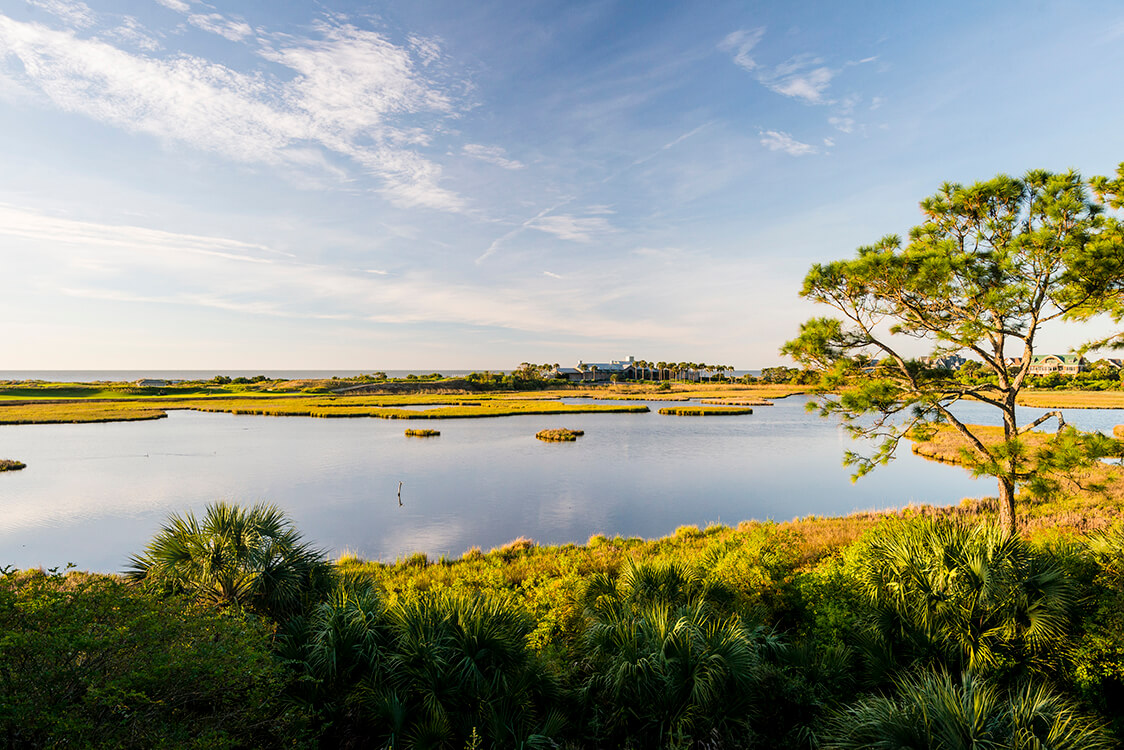 What's Happening This Spring on Kiawah Island
