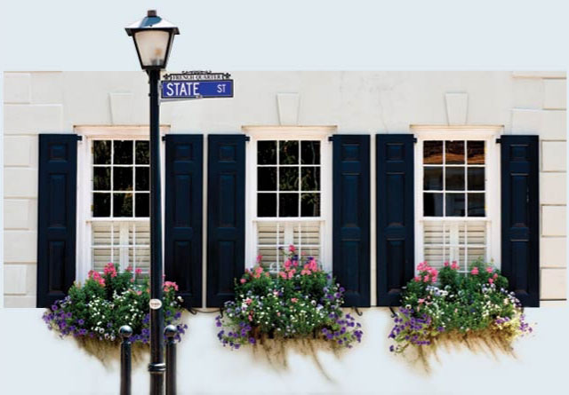Window shutters in Charleston