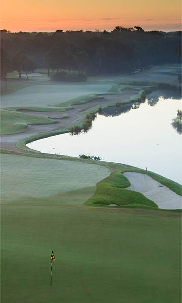 Aerial View of the River Course