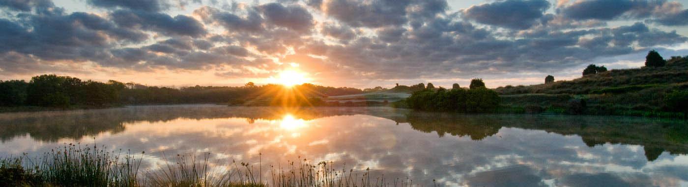 Kiawah Environmental Stewardship