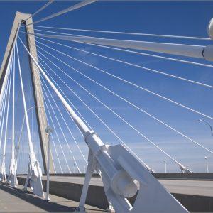 Arthur_Ravenel_Jr._Bridge's_cables
