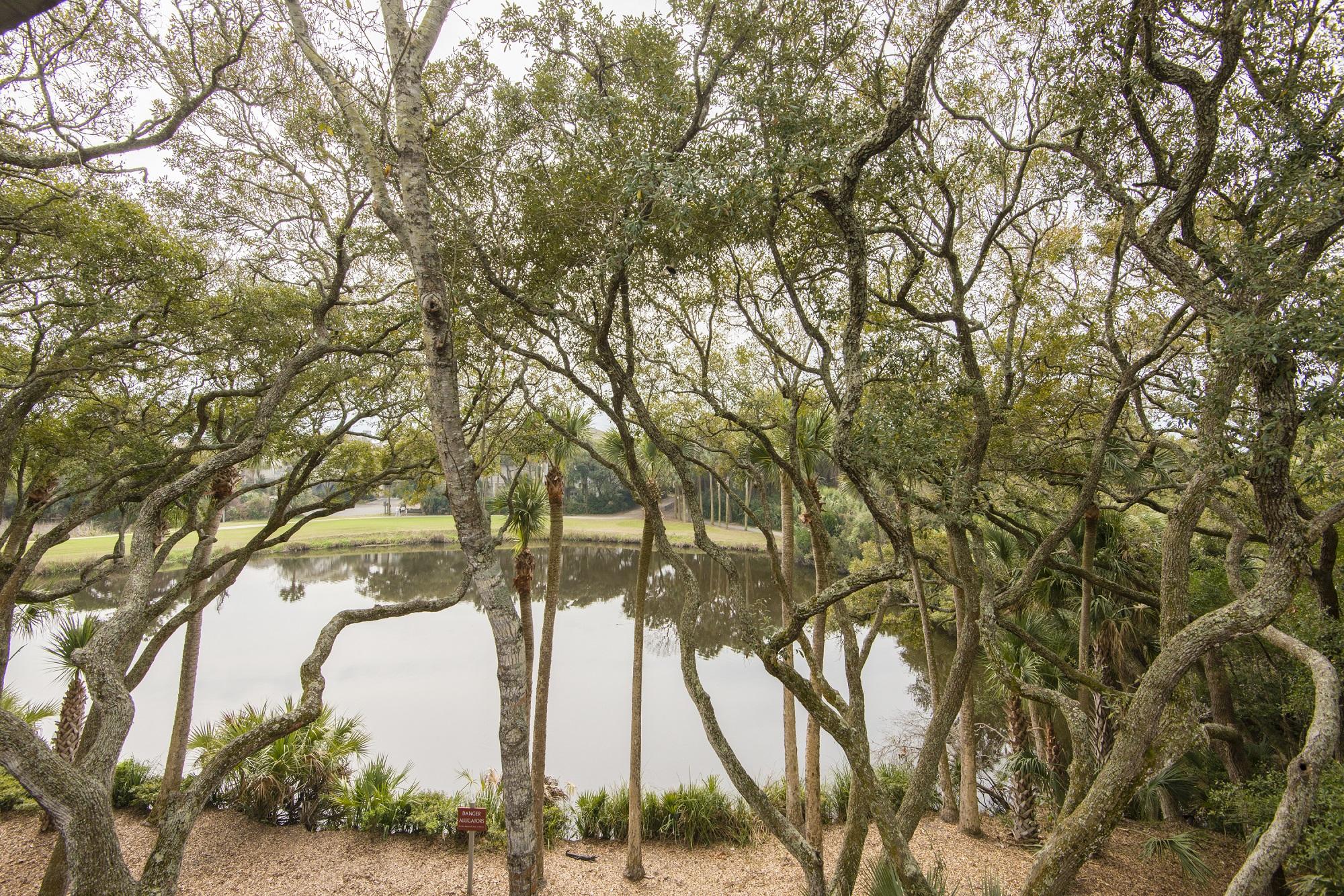 Turtle Point Villas in Photos 3