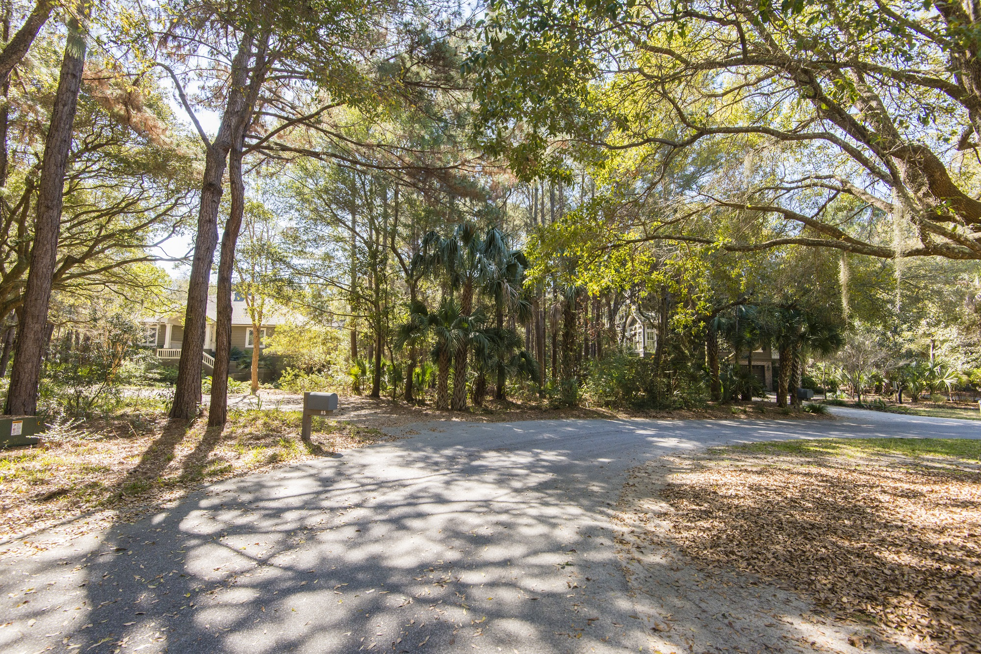 Plantation Woods North in Photos 4