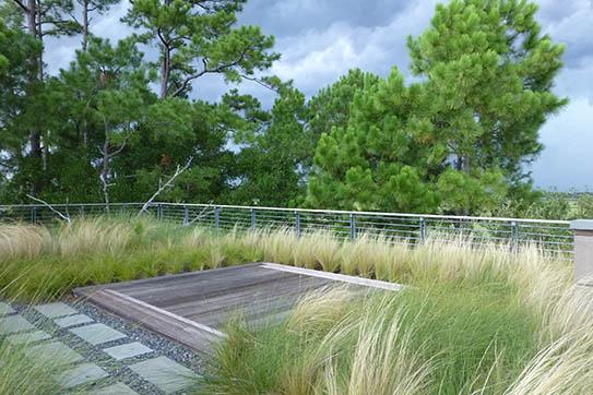 Wertimer & Associates' landscape design work includes stunning Lowcountry rooftop gardens.