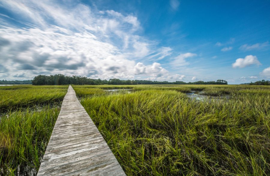 3 Organizations to Get Involved with on Kiawah Island