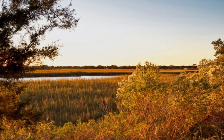 Fall in Love With Kiawah Island: Autumn Activities for the Family