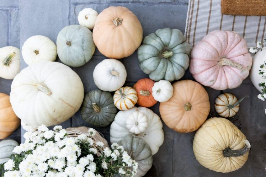 Decorating Your Beachfront Home for Fall