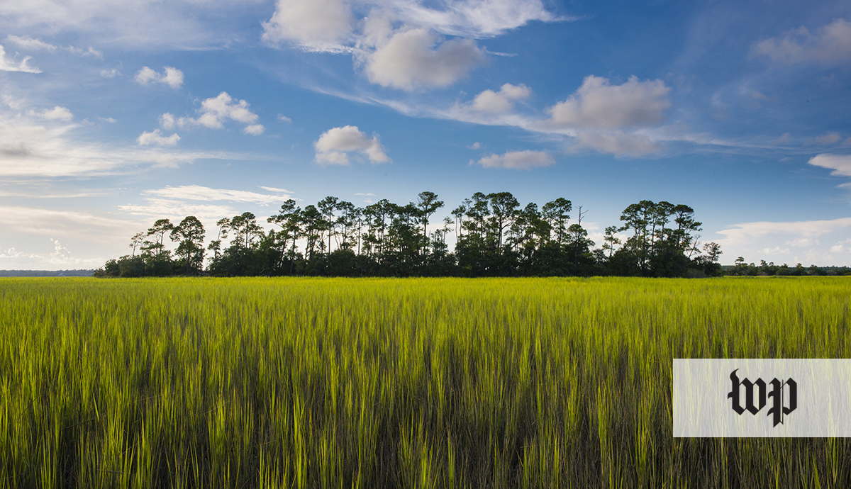 PRESS: Kiawah Island's Conservation Efforts featured in The Washington Post